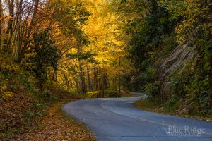 Fall Blue Ridge Parkway