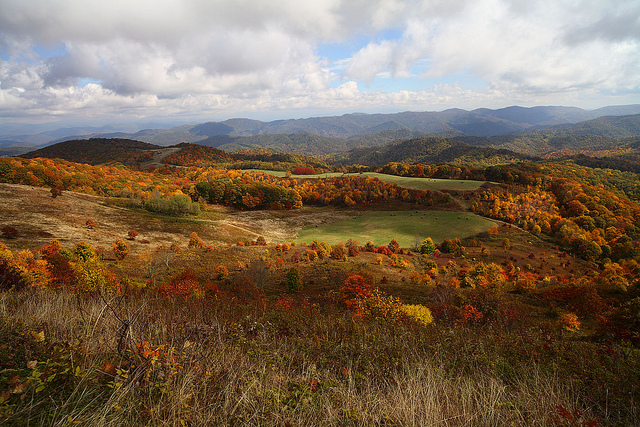 Fall Max Patch