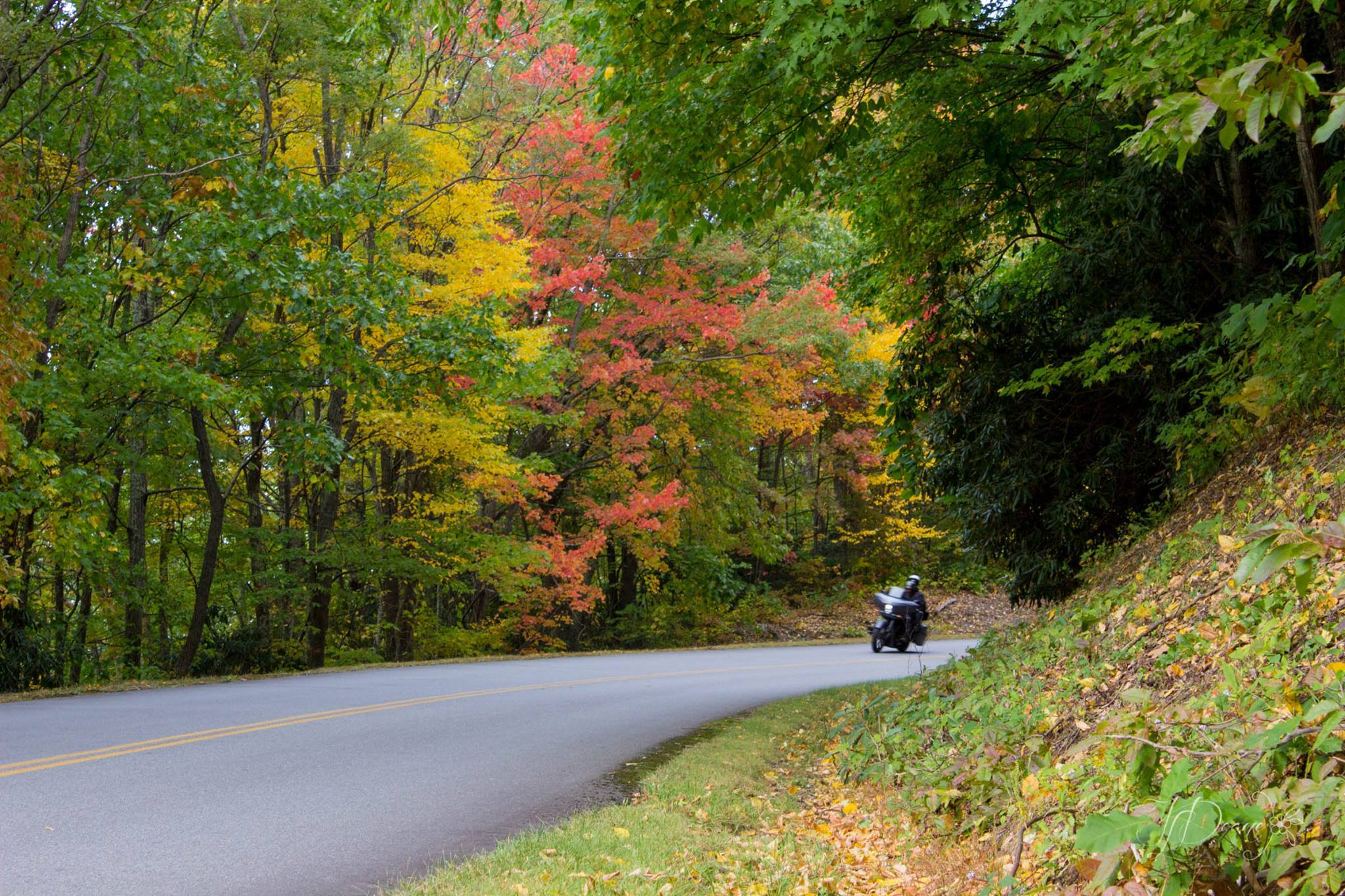 Maggie Valley Motorcycle Rides
