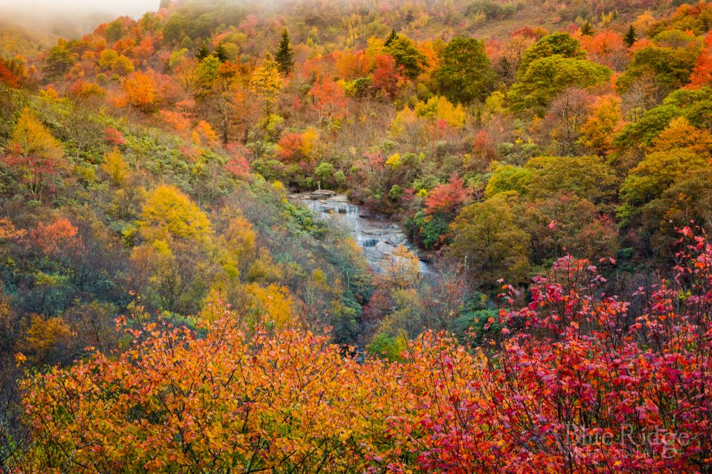 Fall at Graveyard Fields